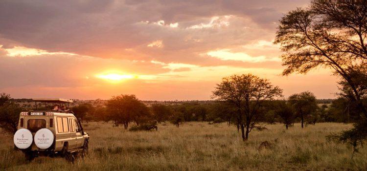 Marcher au cœur de la nature en Tanzanie