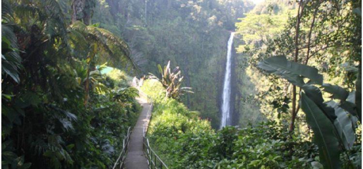 Découvrir la Polynésie à travers les sites volcaniques hawaïens